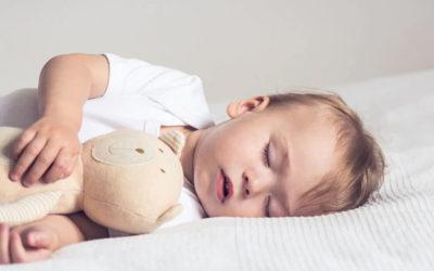Il sonno, le apnee ostruttive e la cavità orale: quali connessioni?